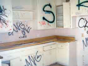 Vandalism Mitigation1